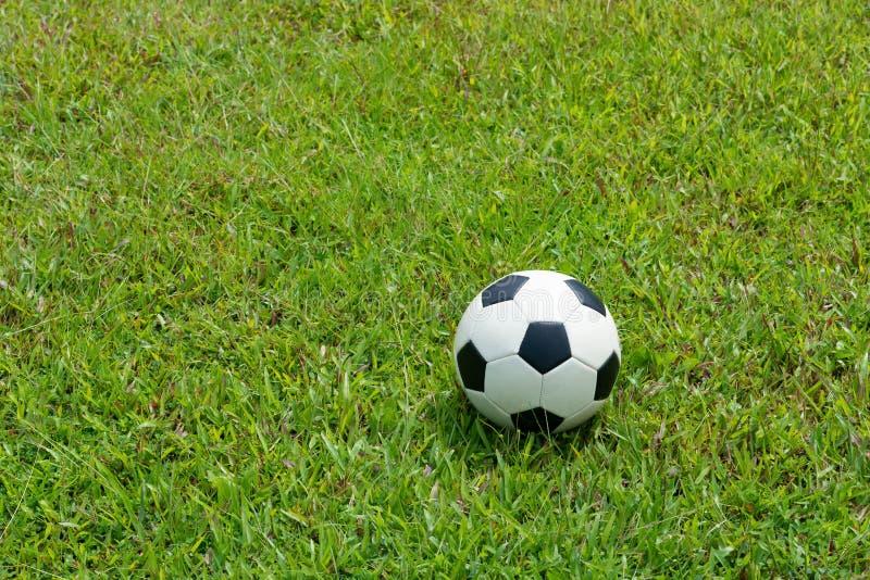 Fotbollboll på gräs av fotbollfältet royaltyfria bilder