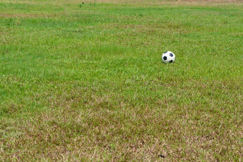 Fotbollboll på gräs av fotbollfältet arkivfoto