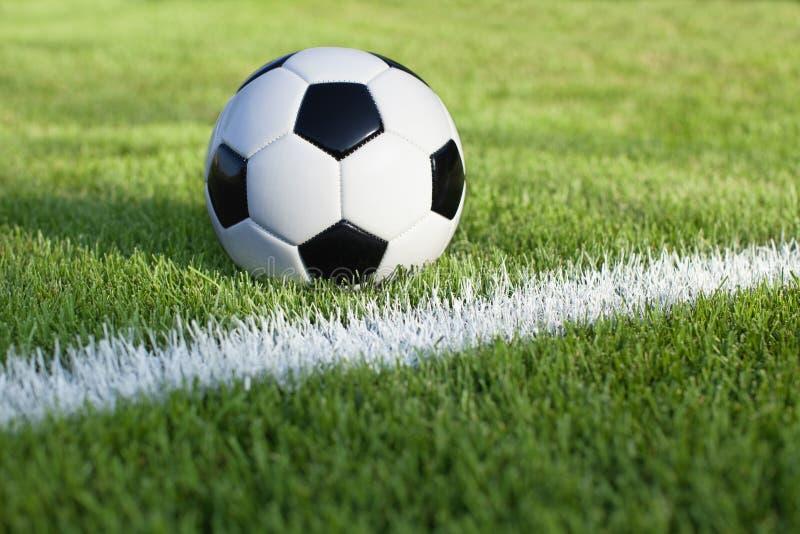 Fotbollbollen sitter på gräsfält med det vita bandet royaltyfri fotografi