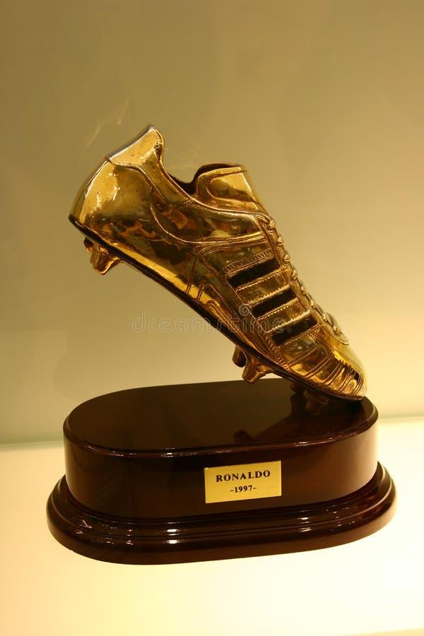 Fotbollkopp royaltyfri foto