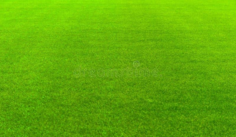 Fotbollspelplan royaltyfri fotografi