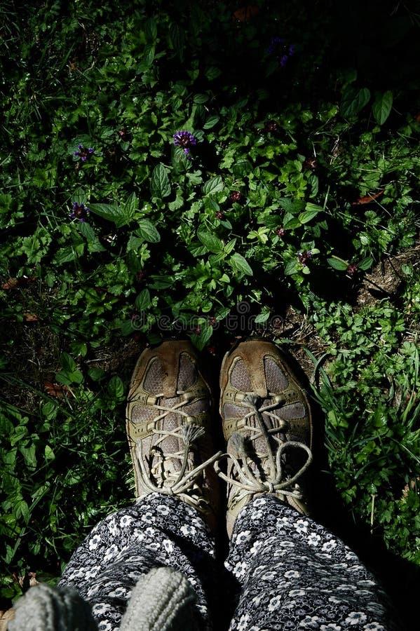 Foten tillhör jord arkivfoton