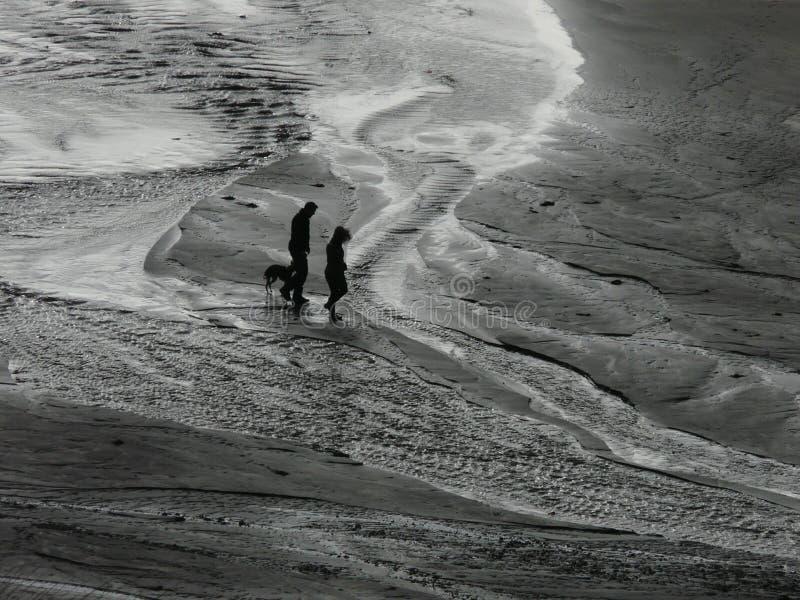 Fotgängare på sanden arkivfoton