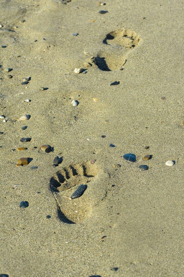 Fotmoment i sanden arkivbild