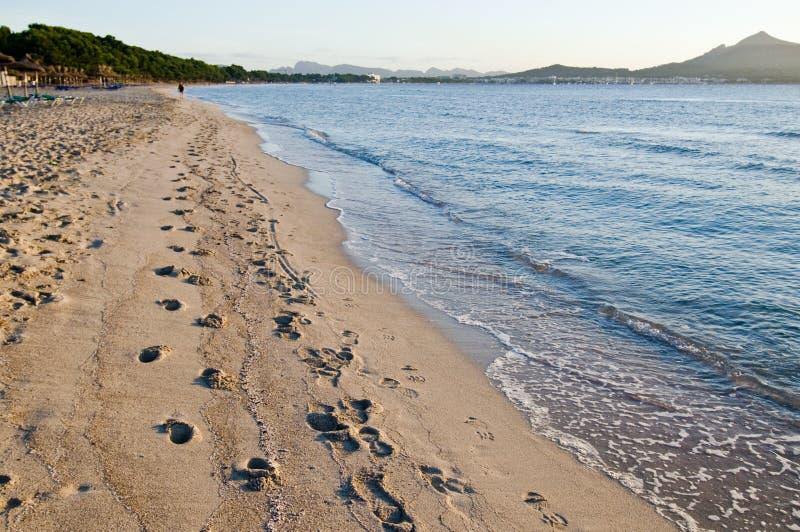 Fotmoment i sanden på stranden royaltyfri fotografi