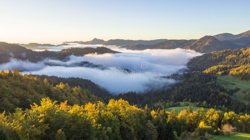 Foto aérea de la niebla gruesa que cubre el bosque y el lago en paisaje de la madrugada imagenes de archivo