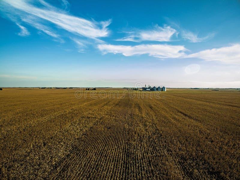 Foto aérea del abejón - granja del maíz de Illinois imagenes de archivo
