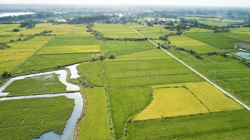 Foto aérea do campo bonito do Sul da China no outono fotos de stock
