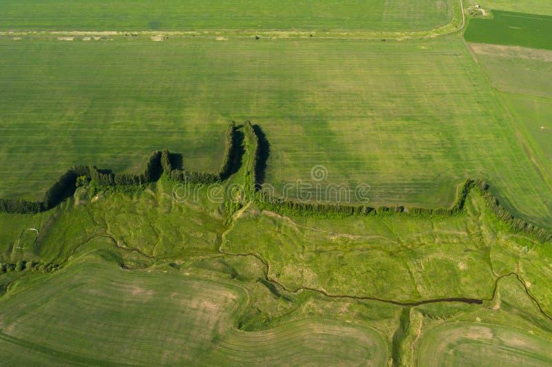 Foto aérea do campo da agricultura - ajardina a foto do zangão fotos de stock royalty free