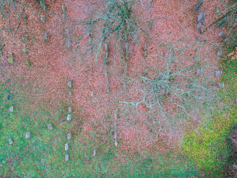 Foto aérea do cemitério judaico fotografia de stock