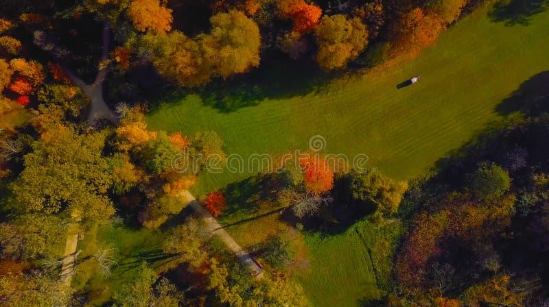 A foto aérea do zangão - vista aérea de uma floresta verde luxúria é um lugar bonito na Europa Central 2019 imagem de stock