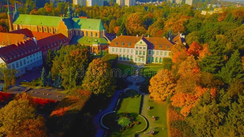 A foto aérea do zangão - vista aérea de uma floresta verde luxúria é um lugar bonito na Europa Central 2019 foto de stock royalty free