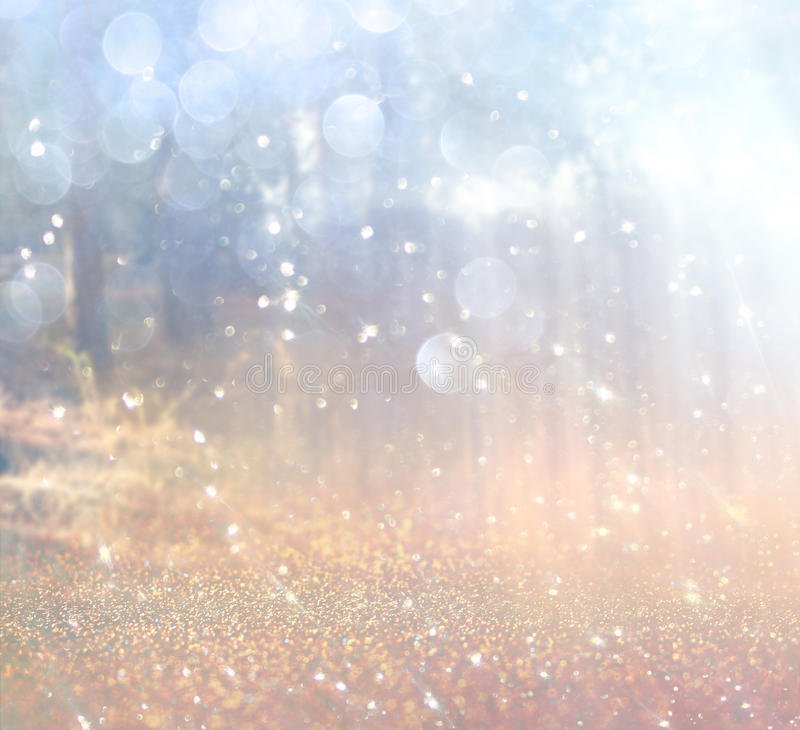 A foto abstrata da explosão da luz entre árvores e bokeh do brilho ilumina-se a imagem é borrada e filtrada foto de stock royalty free