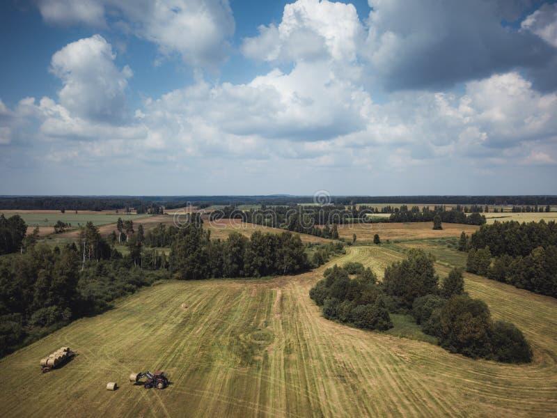 Foto aerea del fuco dell'agricoltore Harvesting Hay Rolls nel giacimento di grano con un trattore rosso - Sunny Summer Day, sguar immagine stock libera da diritti
