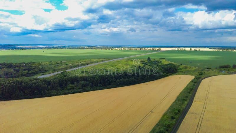 Foto aerea di vista superiore dal fuco volante delle risaie verdi in campagna fotografia stock libera da diritti