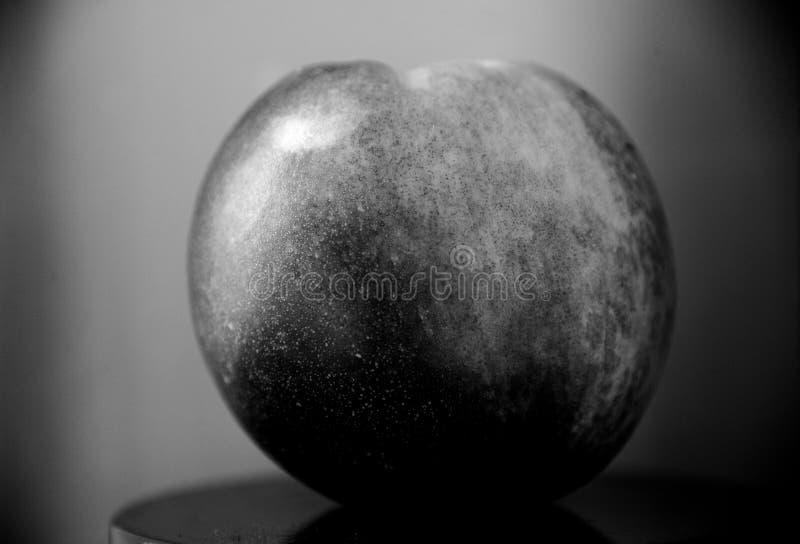 Foto artística de una manzana en blanco y negro fotos de archivo libres de regalías