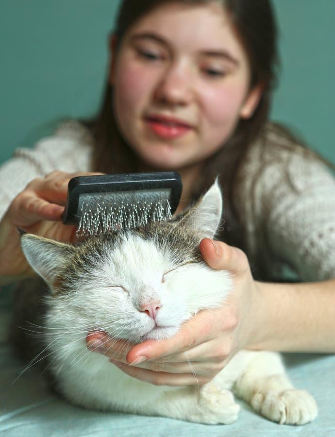 Foto ascendente próxima de escovadela do gato da menina adolescente imagens de stock royalty free