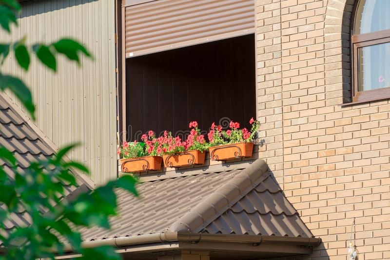Foto av blommor utanför fönstret Blommor på bakgrund för tegelstenvägg royaltyfria foton