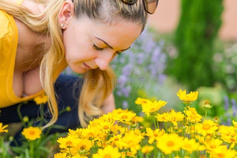 Foto av den nätta blonda kvinnan som ner ligger i kamomillfältet, gullig kvinnlig tyckande om lukt av tusenskönan, söt tonåringfl arkivfoton