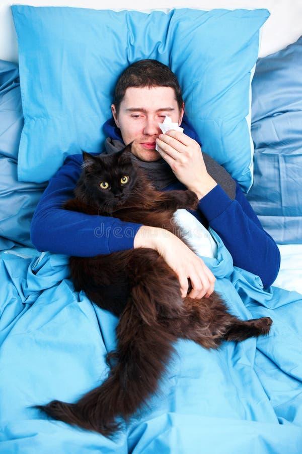 Foto av den sjuka mannen i halsduk med katten som ligger i säng royaltyfria foton