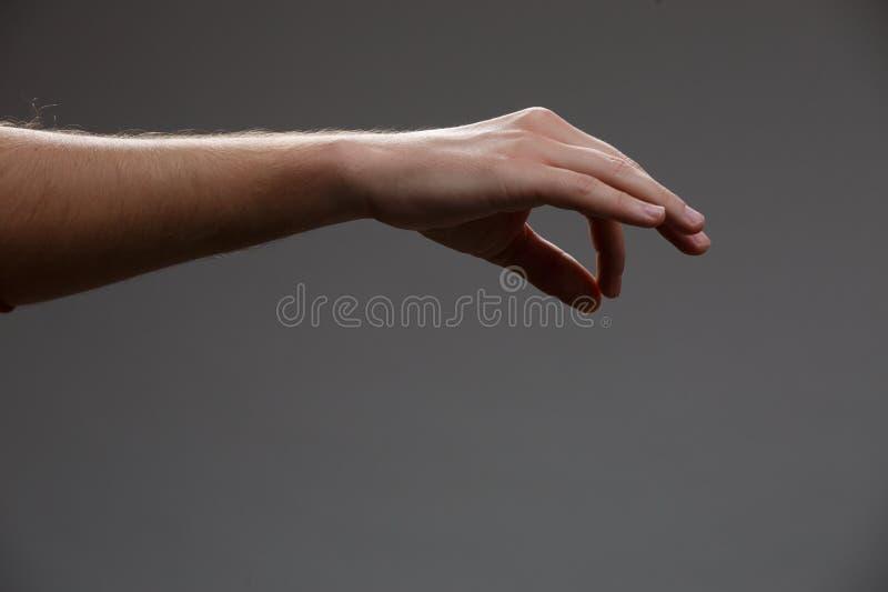 Foto av den utsträckta handen som rymmer något med två fingrar på tom grå bakgrund arkivfoto