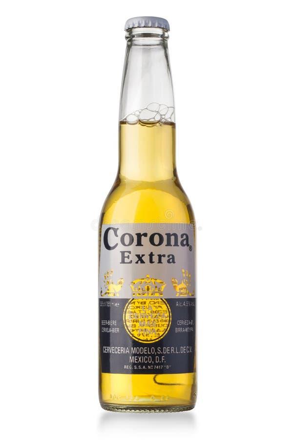 Foto av en flaska av Corona Extra Bee arkivbilder