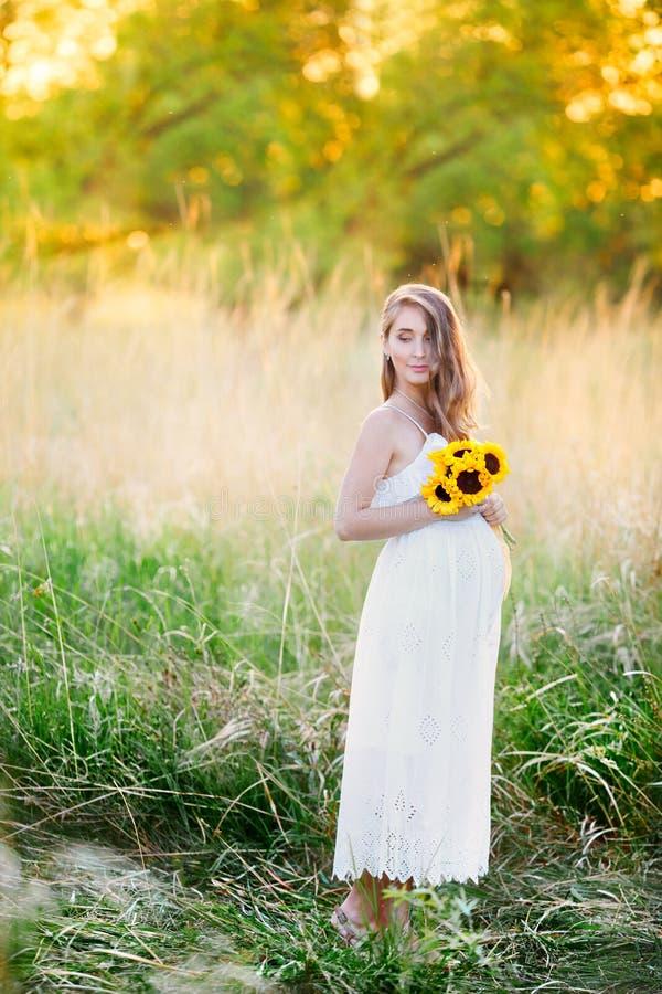 Foto av en härlig gravid flicka i ett vitt klänninganseende på solnedgången i ett gult fält Gravid flicka på fältet av tusensköna royaltyfria bilder
