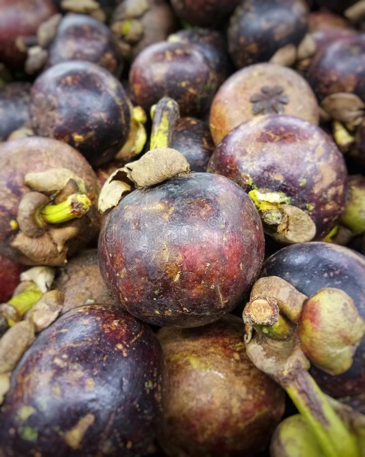 Foto av en hög av purpurfärgade mangosteenfrukter arkivbilder