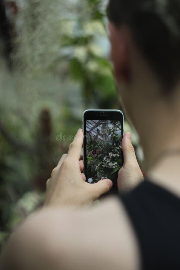 Foto av en telefon i händer royaltyfria foton