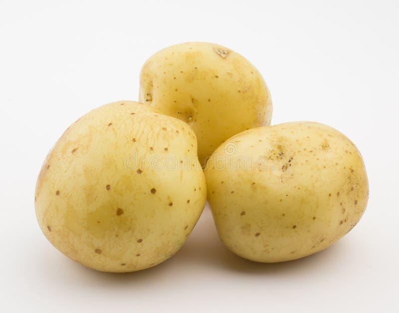 Foto av tre potatisar som isoleras på vit bakgrund arkivfoton