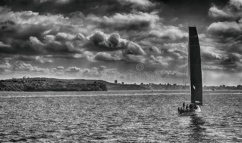 Foto in bianco e nero della barca a vela fotografia stock libera da diritti