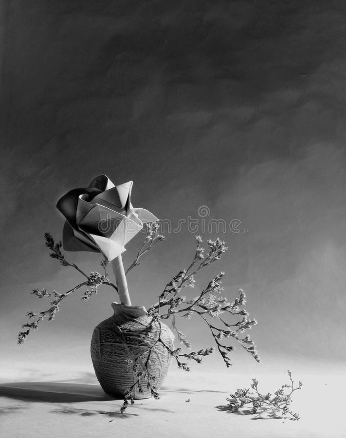 Foto in bianco e nero di Pechino, Cina La bella natura morta con è aumentato, vaso dei fiori sul bianco, il grey, fondo leggero fotografia stock