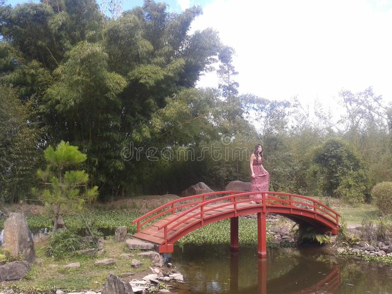 Foto bij Japanse tuin royalty-vrije stock fotografie