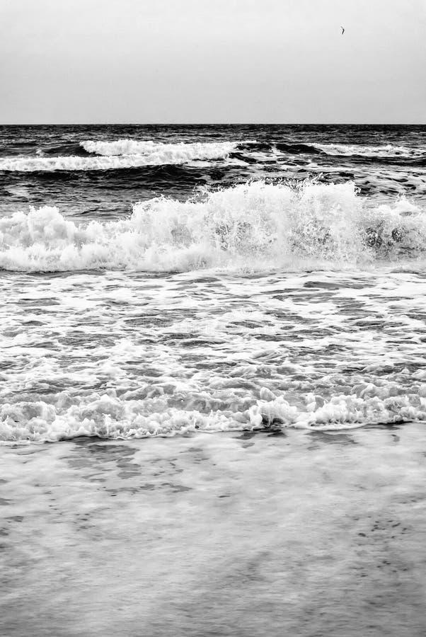 Foto blanco y negro de las ondas del mar cerca para arriba cerca de la orilla fotografía de archivo