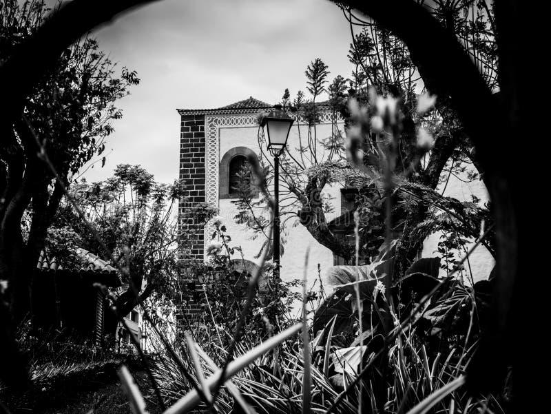 Foto blanco y negro del detalle de la perspectiva de un parque imagen de archivo