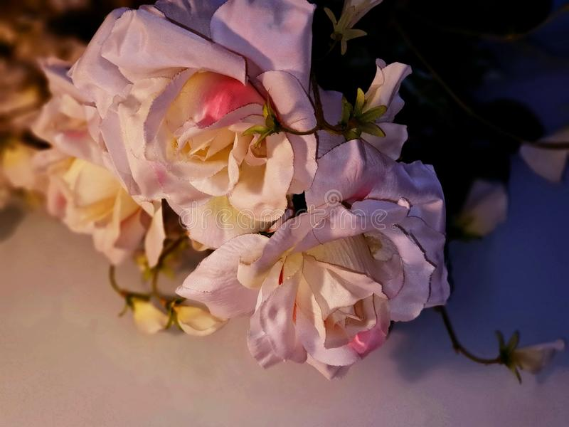 Foto bonita da ilustração do cartão de cumprimentos das flores do ramalhete das rosas do fundo do casamento do amor do dia das mu fotografia de stock