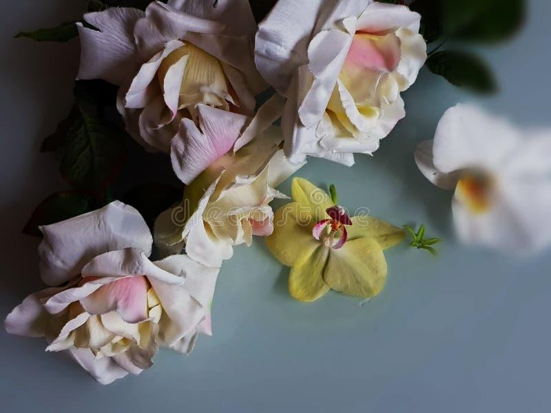 Foto bonita da ilustração do cartão de cumprimentos das flores do ramalhete das rosas do fundo do casamento do dia de Valentine W foto de stock royalty free