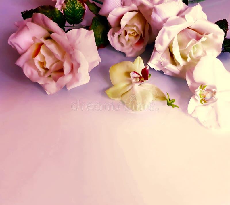 Foto bonita da ilustração do cartão de cumprimentos das flores do ramalhete das rosas do rBackground do casamento do amor do dia  fotografia de stock