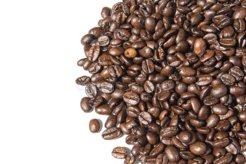 Foto branca do fundo dos feijões de café Imagem bonita, backgrou foto de stock