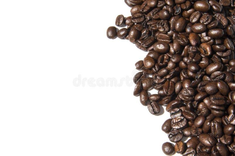 Foto branca do fundo dos feijões de café Imagem bonita, backgrou imagem de stock