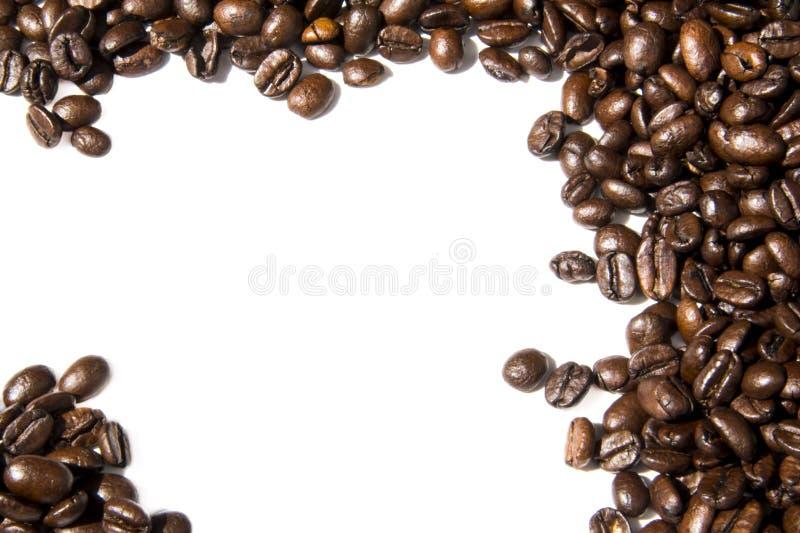Foto branca do quadro do fundo dos feijões de café Imagem bonita, vagabundos foto de stock royalty free