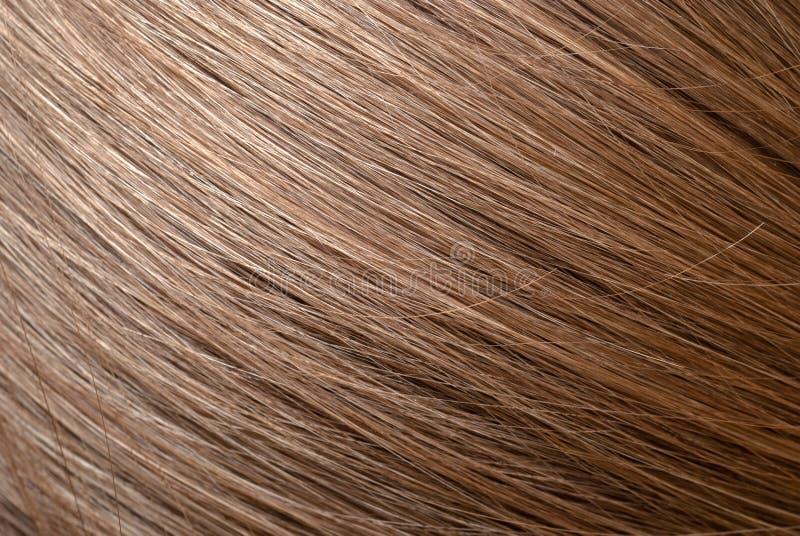 Foto brun clair droit de macro de cheveux image libre de droits