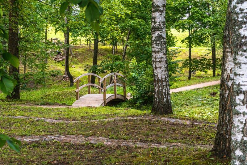 Foto colorida del parque en un día de Sunny Autumn - puente de madera en el medio de él imagen de archivo