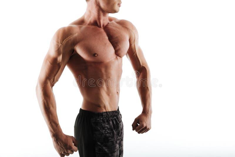 Foto cosechada del hombre muscular joven aislado en el fondo blanco fotografía de archivo