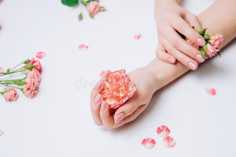 Foto criativa das m?os f?meas da forma com pele limpa e de flores cor-de-rosa da posse do tratamento de m?os ? disposi??o no fund imagens de stock royalty free