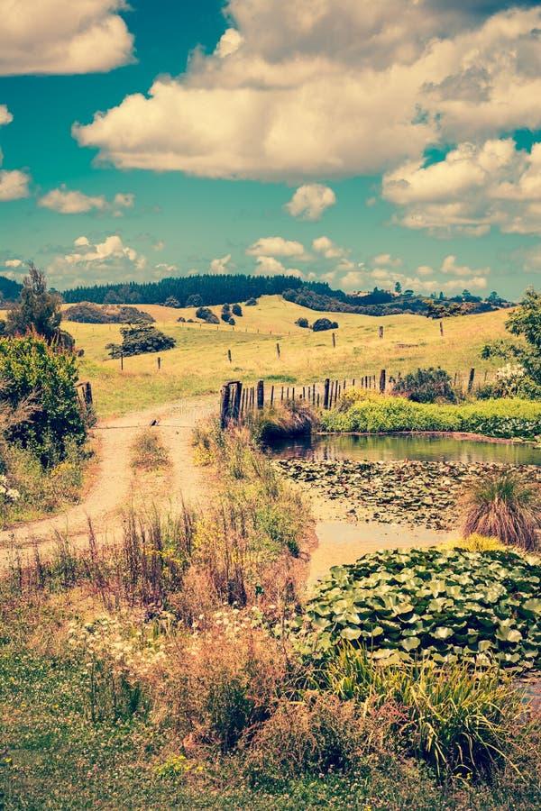 Foto d'annata di un paesaggio rurale pastorale con la strada della ghiaia che avvolge lo stagno passato del giglio verso Rolling  immagini stock libere da diritti