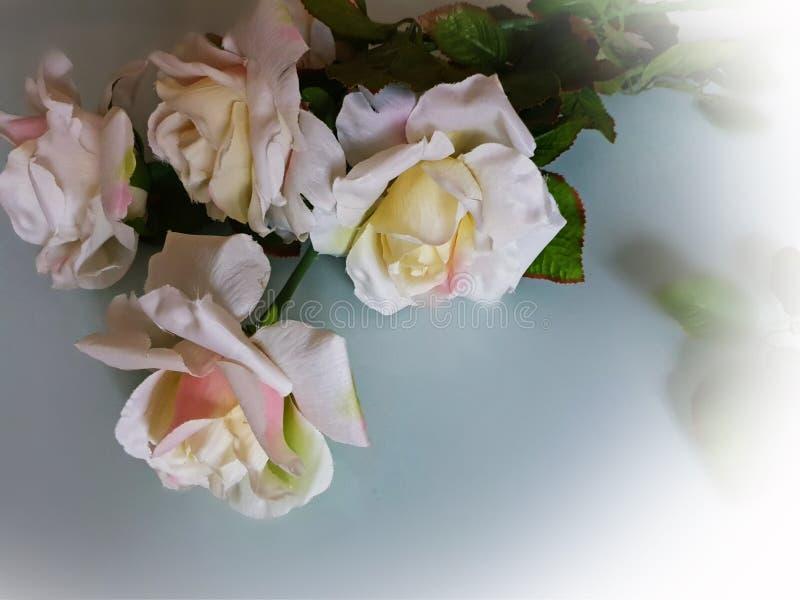 Foto da ilustração do cartão de cumprimentos do ramalhete das rosas do fundo do casamento do dia de Valentine Women bonito das ro fotos de stock royalty free