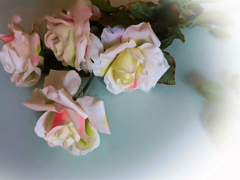 Foto da ilustração do cartão de cumprimentos do ramalhete das rosas do fundo do casamento do dia de Valentine Women bonito das ro imagem de stock royalty free