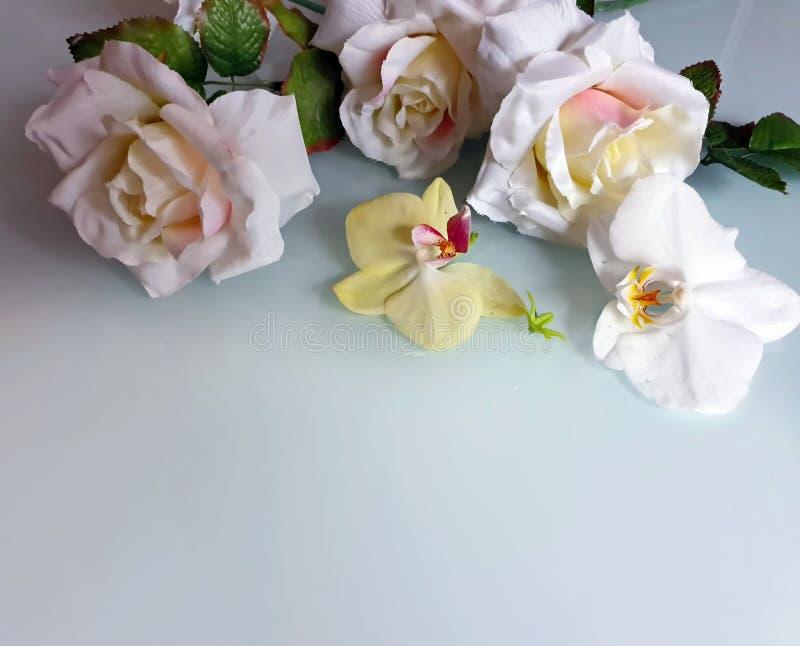 Foto da ilustração do cartão de cumprimentos do ramalhete das rosas do fundo do casamento do dia de Valentine Women bonito das ro imagem de stock