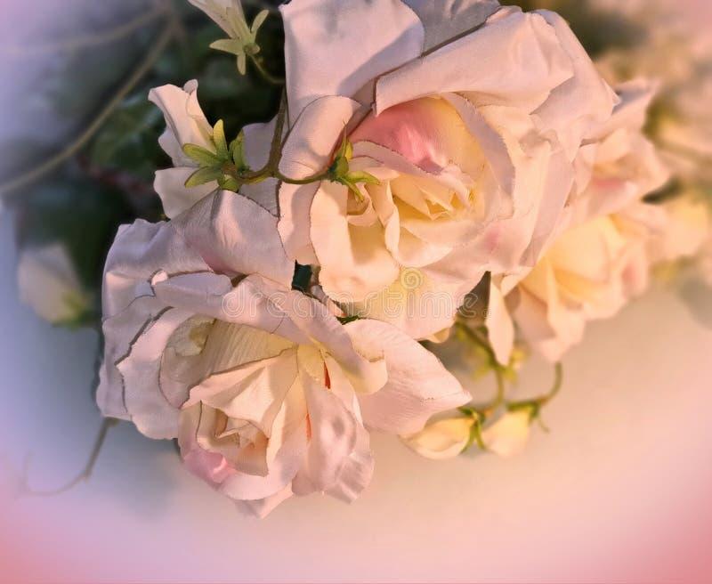 Foto da ilustração do cartão de cumprimentos do ramalhete das rosas do fundo do casamento do dia de Valentine Women bonito das ro imagens de stock